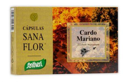 PLANTAS CAPSULAS CARDO MARIANO